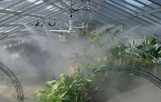 High-Pressure Fog Systems for Greenhouses