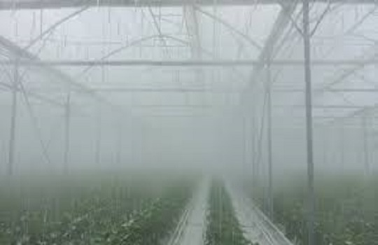 What is the Effect of High Pressure Fog Syste